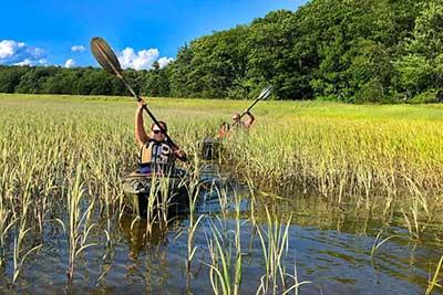 Marshes and Creeks Kayak Tours